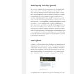 WordPress 2015 Twenty Fifteen