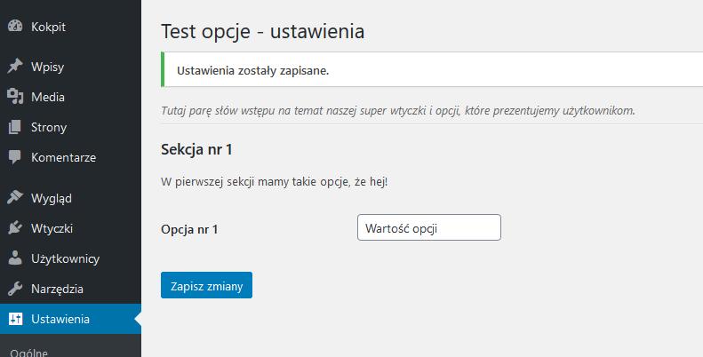 testowe opcje i ustawienia wordpress settings API